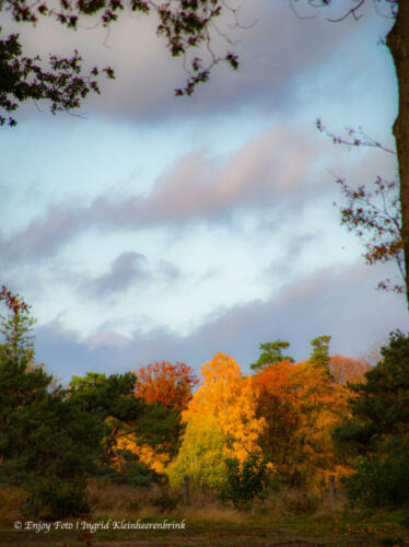 Herfst in het Springendal Hezingen